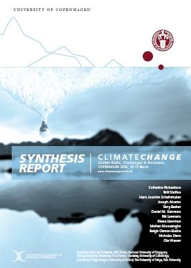 Volantino Syntesis Report